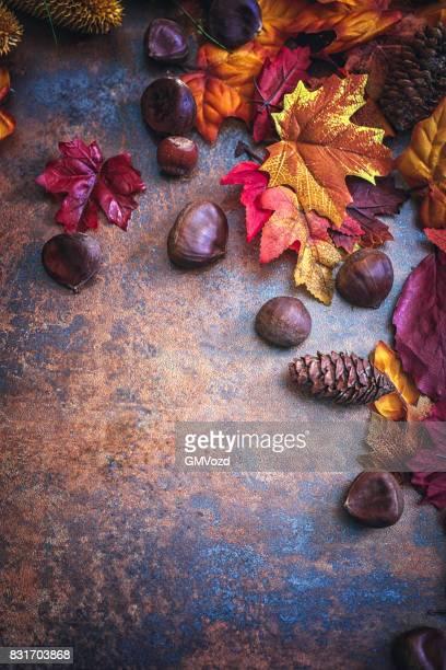 herbst dekoration-hintergrund mit blättern und nüssen - kastanie laubbaum stock-fotos und bilder