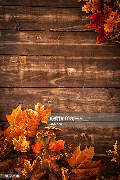 autumn decoration background with leafs - fall background stock photos and pictures