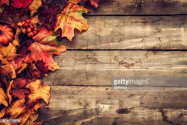 Herbst Dekoration Hintergrund mit Leafs