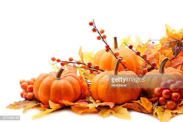 autumn decoration on white with copy space - pumpkin stock pictures, royalty-free photos & images