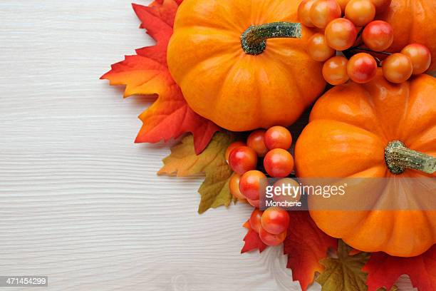 Autumn decoration on wood with copy space