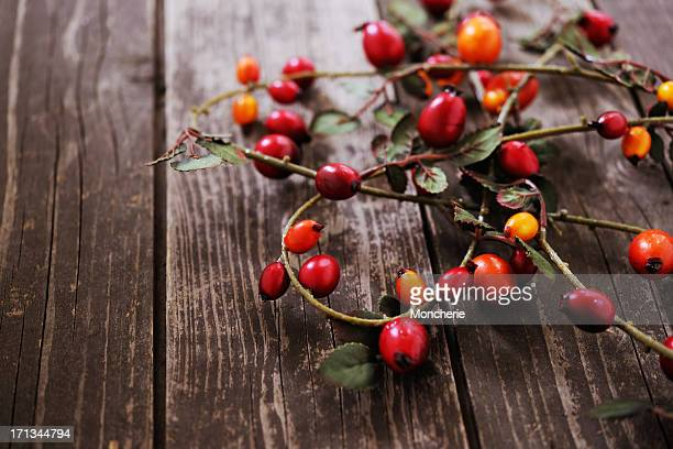 Autumn decoration with rose hips