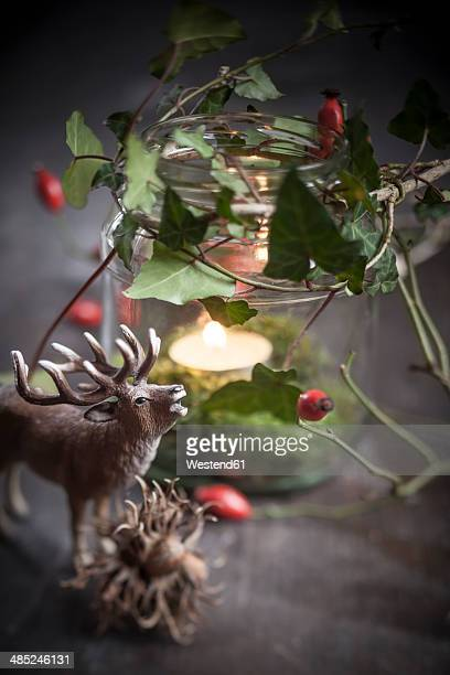 Autumn decoration with toy stag, lantern, hazelnuts on wooden table