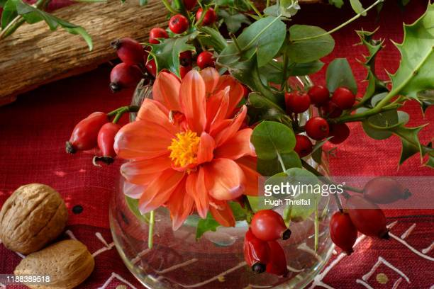 autumn dining table decoration with wood, ivy, rosehips, holly and a dahlia flower. - hugh threlfall stock pictures, royalty-free photos & images