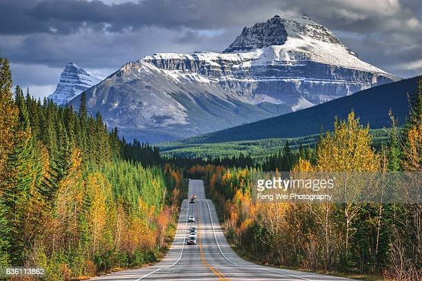 autumn drive in canadian rockies,  icefields parkway, alberta, canada - canadian rockies stockfoto's en -beelden