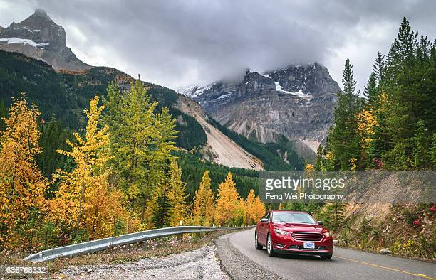 autumn drive in rocky mountains, yoho valley road, yoho national park, british columbia, canada - movendo um veículo - fotografias e filmes do acervo