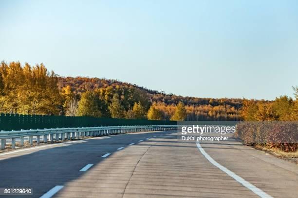autumn empty asphalt road