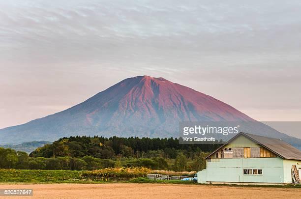 Autumn evening farmhouse and Mount Yotei