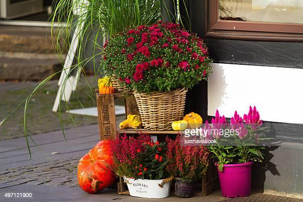 Herbst Blumen Dekoration