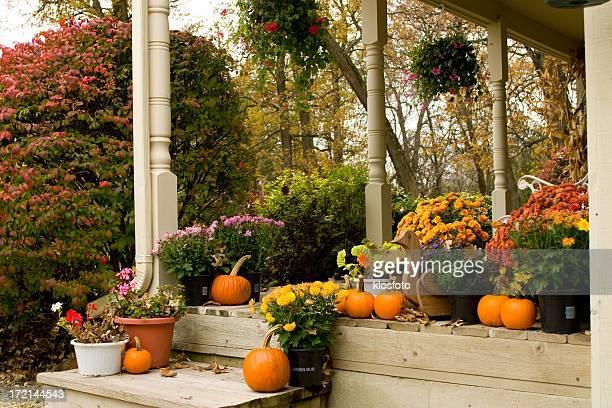 秋のフラワーポーチ - ポーチ ストックフォトと画像