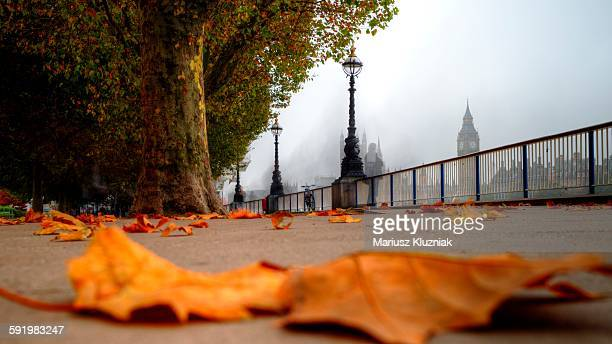 autumn foggy southbank with big ben view - river thames stock pictures, royalty-free photos & images