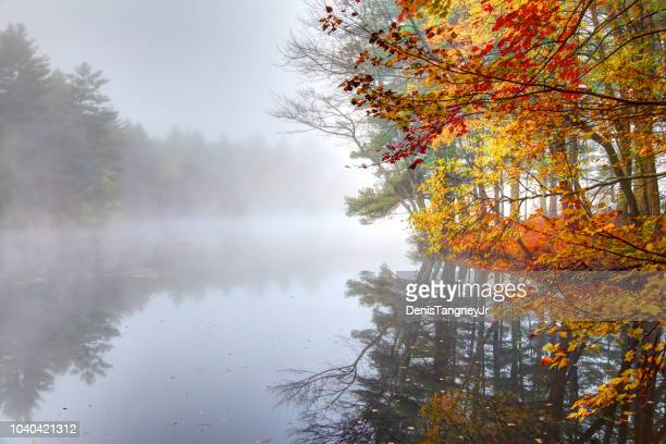 Autumn foliage along a pond in the Monadnock region of New Hampshire