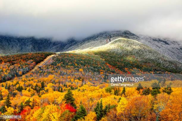 autumn foliage and snow on the slopes of mount washington - snowcapped mountain stock pictures, royalty-free photos & images