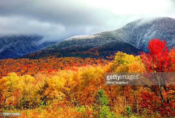 Herfst bladeren en sneeuw op de hellingen van Mount Washington