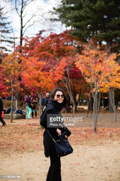 autumn foliage in nami island, south korea - gangwon province stock pictures, royalty-free photos & images