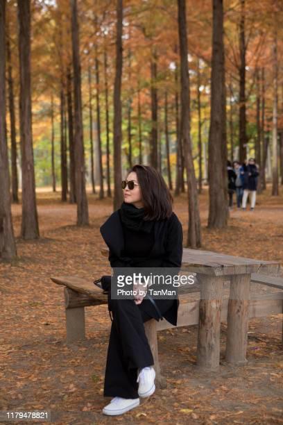 autumn foliage in nami island, south korea - filipino ethnicity and female not male fotografías e imágenes de stock