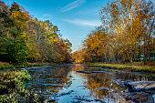 Autumn foliage reflected on the water in Bucks County, Pennsylvania