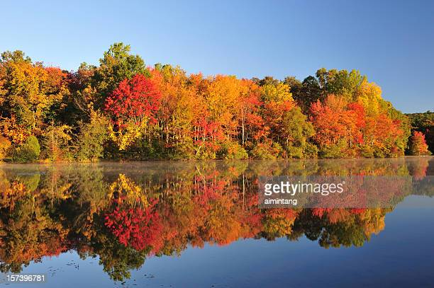 autumn foliage reflection - pennsylvania stock pictures, royalty-free photos & images