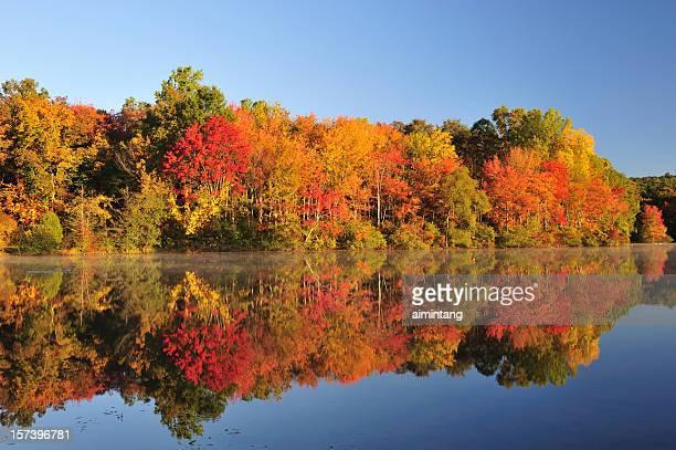 folhagem de outono reflexo - pensilvânia - fotografias e filmes do acervo