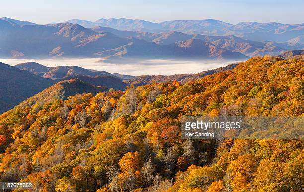 autumn forest and mountains - tennessee stock pictures, royalty-free photos & images