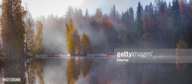 Autumn forest lake, panorama, Finland