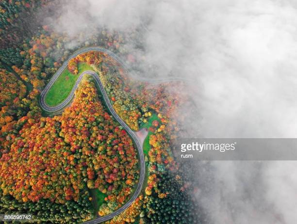 Automne route forestière a descendre dans la brume matinale. Alexandre vallée, Allemagne.