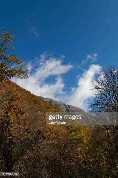 autumn from newfound gap road - newfound gap stock pictures, royalty-free photos & images