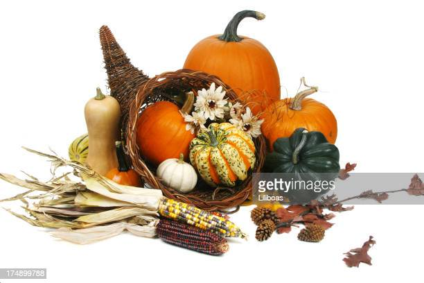autumn harvest series (isolated on white background) - indian corn stock photos and pictures