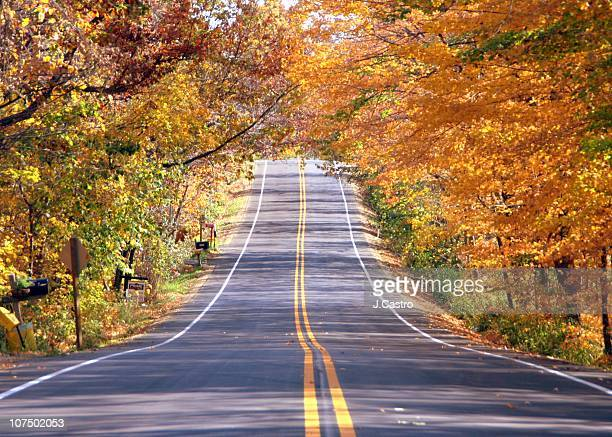 autumn highway - double yellow line stock photos and pictures