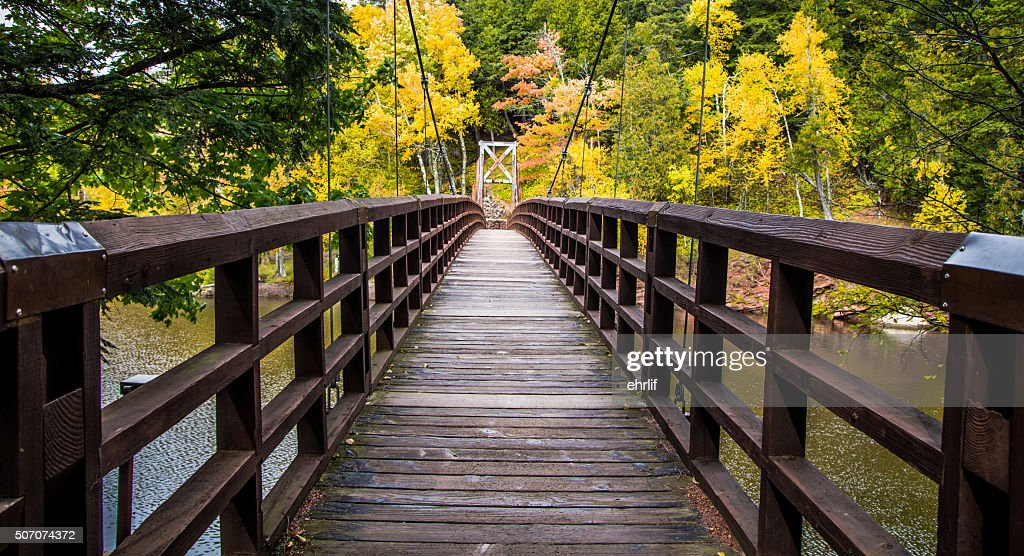 Autumn Hike In Michigan On The North Country Trail : Stock Photo