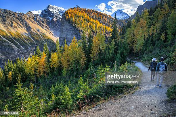 Autumn Hike In Rocky Mountains, Lake Louise, Banff National Park, Alberta, Canada