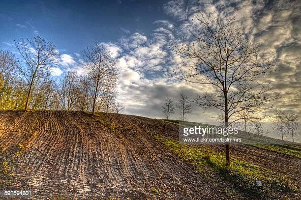 autumn hillside - hügelkette stock-fotos und bilder