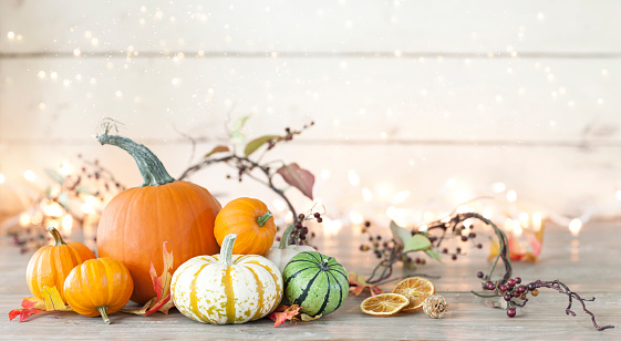 Autumn holiday pumpkin arrangement against an old white wood background 1038559928