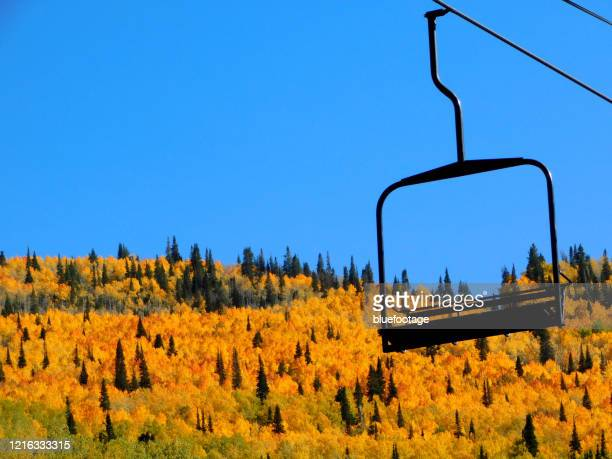 autumn in colorado - bluefootage stock pictures, royalty-free photos & images