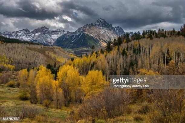 autumn in colorado - mt wilson colorado stock photos and pictures