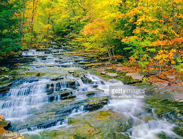 autumn in connecticut - connecticut stock pictures, royalty-free photos & images
