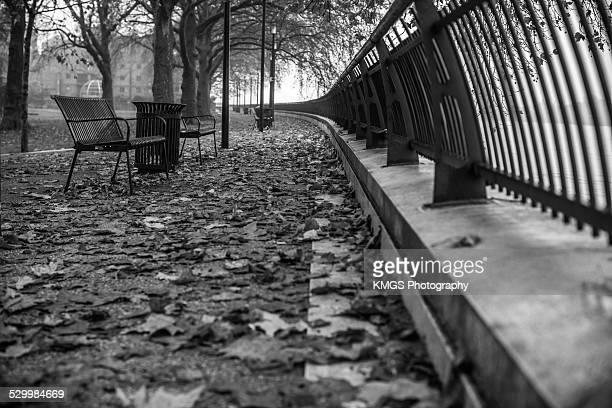 Autumn in East London