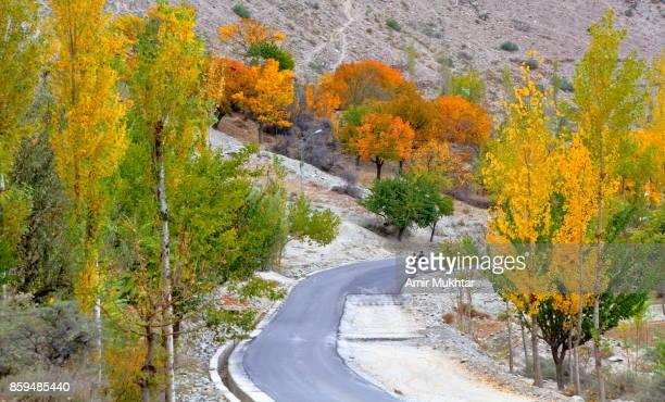 autumn in gilgit baltistan, pakistan - gilgit baltistan stock photos and pictures