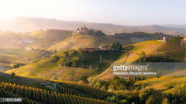 autumn in langhe region, piedmont, italy - piedmont italy stock pictures, royalty-free photos & images