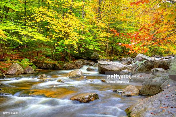autumn in maine - swift river stock photos and pictures