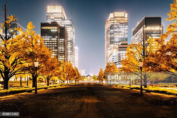 Autumn in Marunouchi, Tokyo