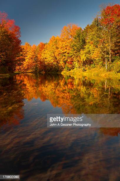 autumn in motion - leelanau county  michigan stock pictures, royalty-free photos & images
