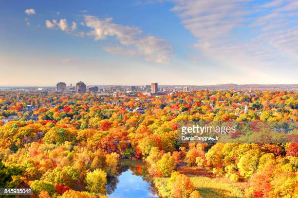 autumn in new haven - autumn leaf color stock pictures, royalty-free photos & images
