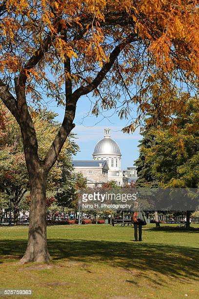 autumn in old montreal - vieux montréal stock pictures, royalty-free photos & images