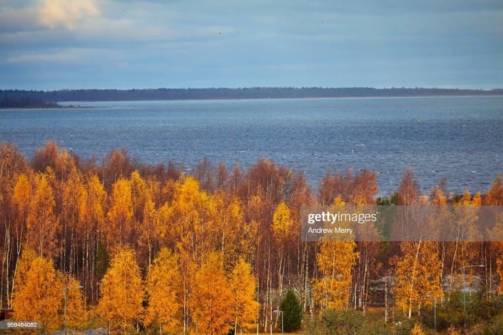 Autumn in Oulu, Finland : Stock Photo