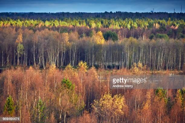 Autumn in Oulu, Finland