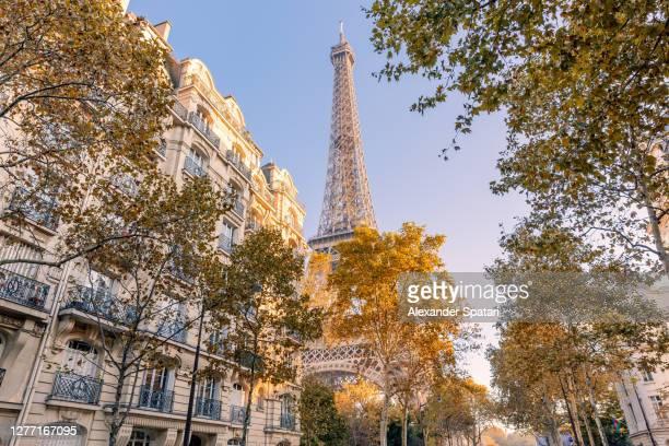 autumn in paris, france - paris fotografías e imágenes de stock