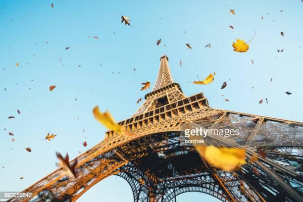 autumn in paris - paris france stock pictures, royalty-free photos & images