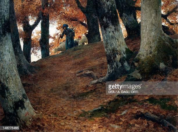 Autumn in the beech woods by Stefano Bruzzi oil on canvas 62X82 cm Piacenza Galleria D'Arte Moderna Ricci Oddi