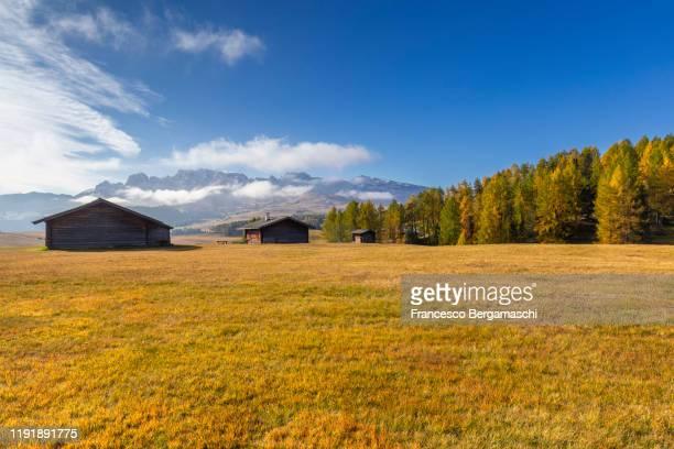 autumn in the dolomites alps, alpe di siusi, seiser alm, trentino alto adige. italy - italia stockfoto's en -beelden